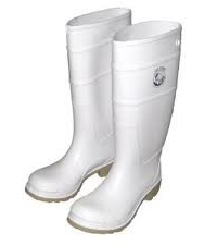 Dr. Horrible's Boots